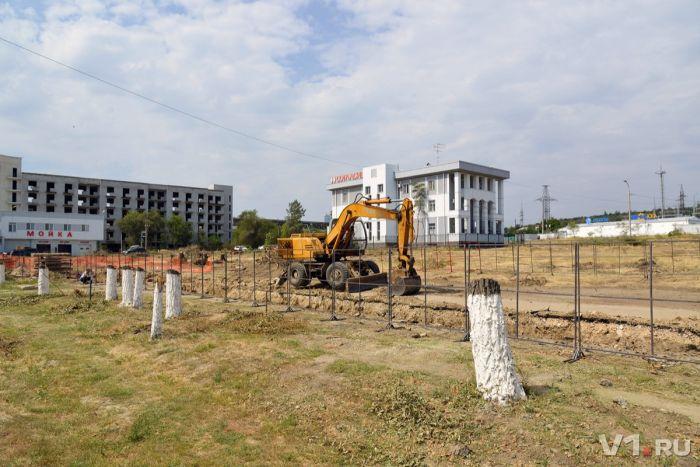 В Волгограде вырубили последние деревья Мемориального парка у Мамаева кургана (9 фото)