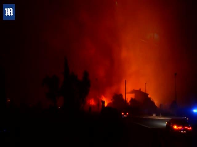 Во Франции бушуют лесные пожары