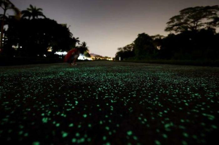 Светящийся тротуар в Сингапуре (7 фото)