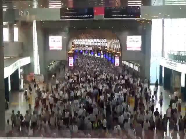 Токийское метро в час-пик