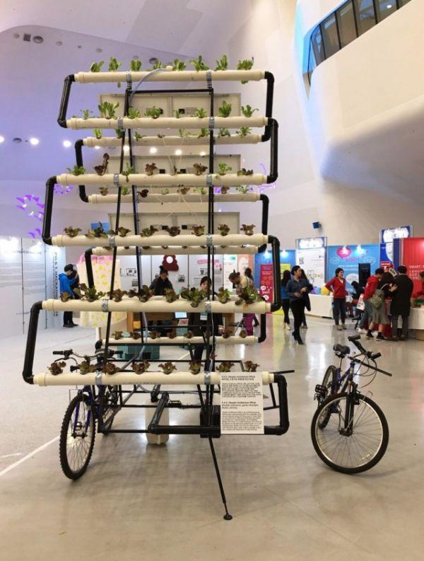 Корейцы собрали велоферму (5 фото)