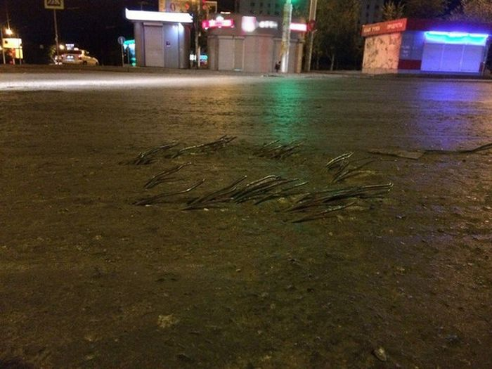 Железные прутья на дороге в Уфе (2 фото)
