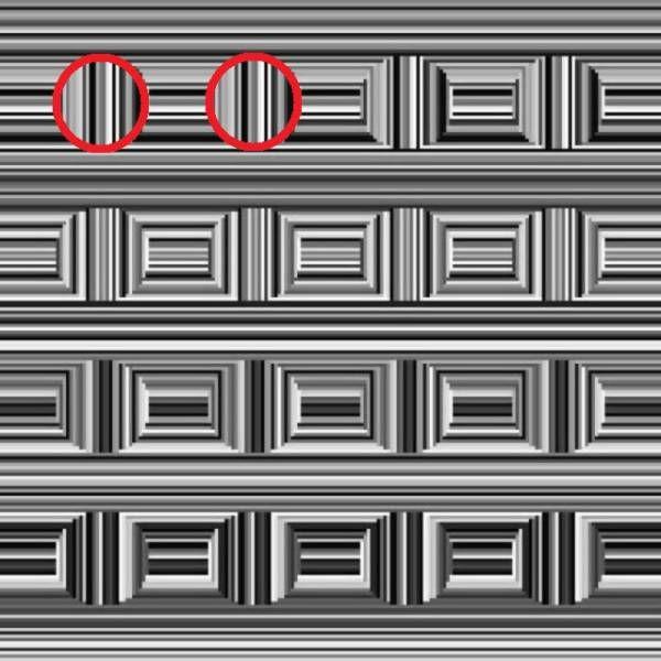 Оптическая иллюзия: сколько кругов на этой картинке?