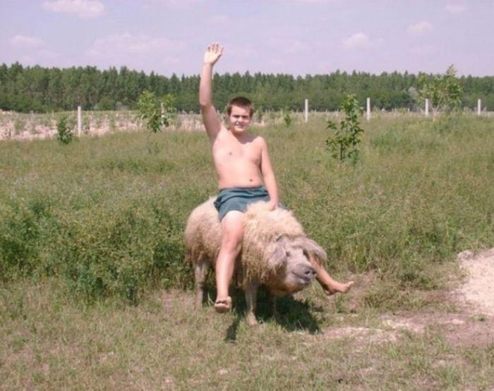 leto_v_derevne_03 Смешные фото из деревни