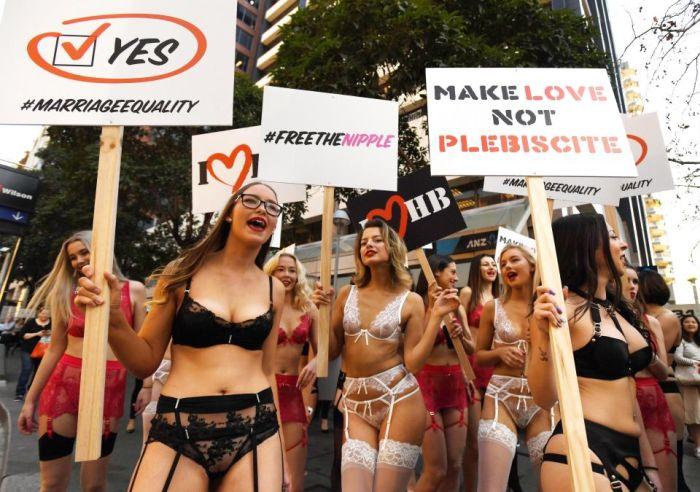 Австралийские девушки в белье выступили в поддержку однополых браков (7 фото)