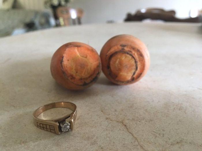 Потерянное 13 лет назад бриллиантовое кольцо было найдено на моркови (4 фото)