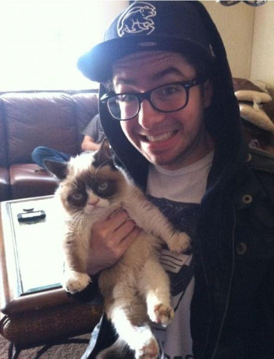Коты, которые не любят селфи (13 фото)