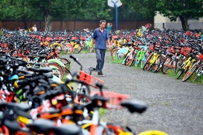 Десятки тысяч брошенных велосипедов в Китае (3 фото)