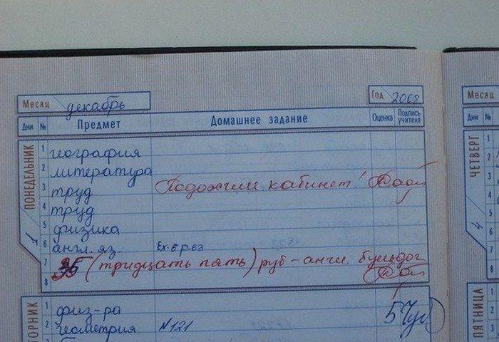Замечания в дневниках (10 фото)