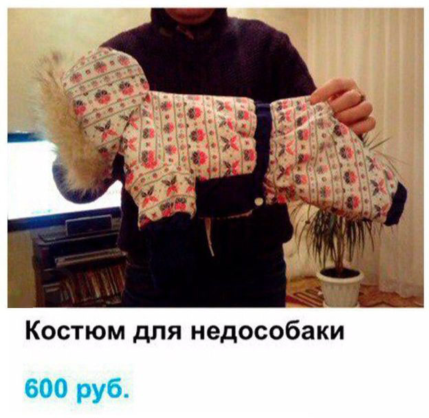 Креативное объявление о продаже комбинезона для собаки (2 фото)