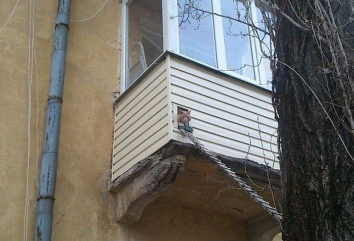 Такое возможно только в России (47 фото)