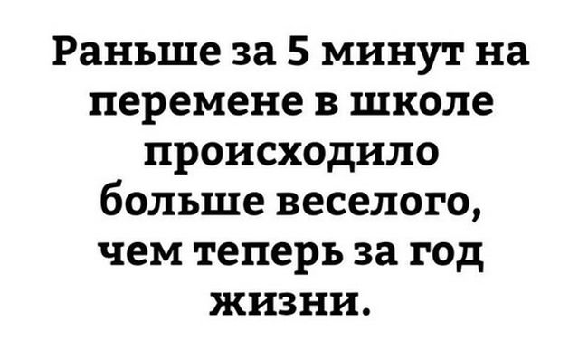 podborka_dnenaya_37.jpg