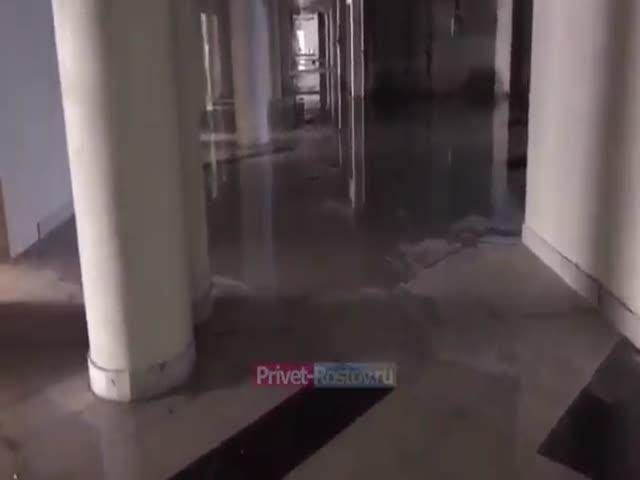 Потоп на стадионе «Ростов-Арена» из-за протекающей крыши