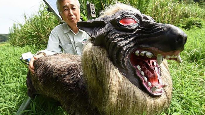 Робот-волк на охране японских полей (4 фото + видео)