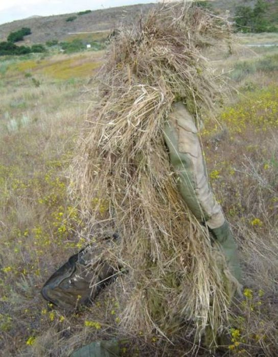 Военный камуфляж - мастера маскировки (25 фото)