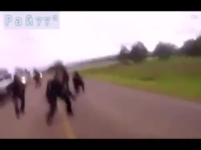 В Мексике военные и полицейские отбили заложников у бандитов