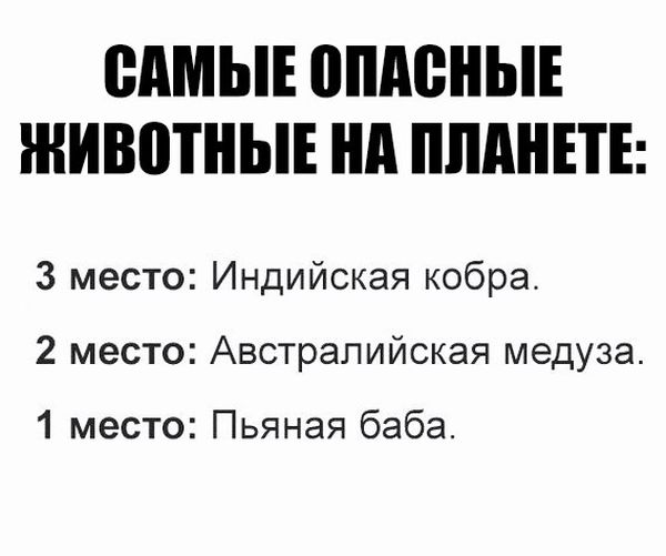 podborka_vecher_03.jpg