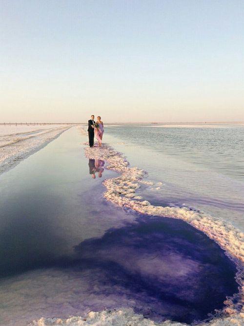 Соленое озеро Баскунчак окрасили в фиолетовый цвет для свадебной фотосессии (8 фото)