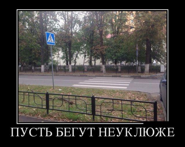 http://trinixy.ru/pics5/20170918/demotivatory_05.jpg