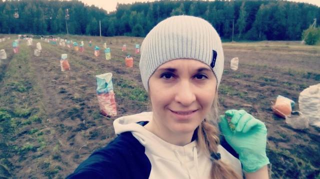 Белорусы копают картошку (27 фото)
