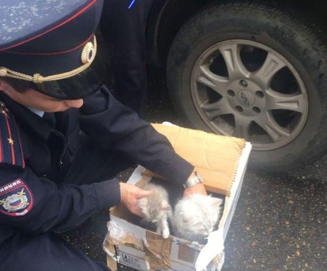 В Казани эвакуировали жилой дом из-за подозрительной коробки (4 фото)