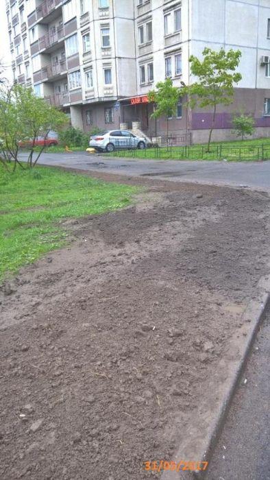 В Санкт-Петербурге во дворе одного из домов идет война за газон (12 фото)