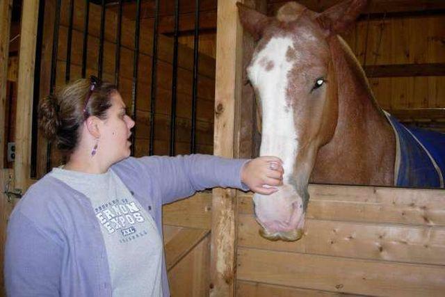 Лошади с усами (10 фото)