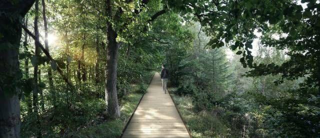 """Подвесной """"парк"""" в лесу в часе езды от Копенгагена (11 фото)"""