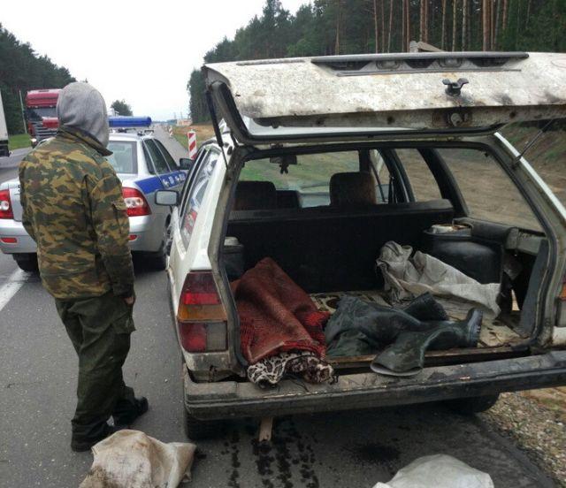 Белорусские ГАИшники устроили погоню за браконьером (2 фото)