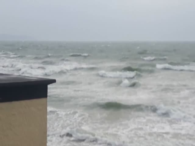 Бесстрашные ирландцы купаются во время урагана