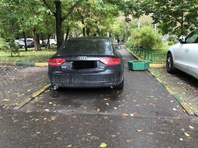 Автоледи отучили от парковки в неположенном месте (2 фото)
