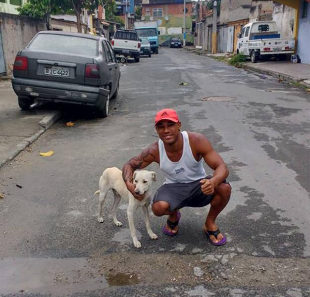 Везучая собака обрела хозяина (6 фото)