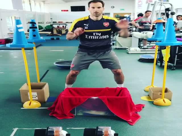 Вратарь Петр Чех опубликовал видео своей тренировки на реакцию