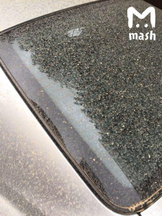 В Сочи прошел грязевой дождь (3 фото)
