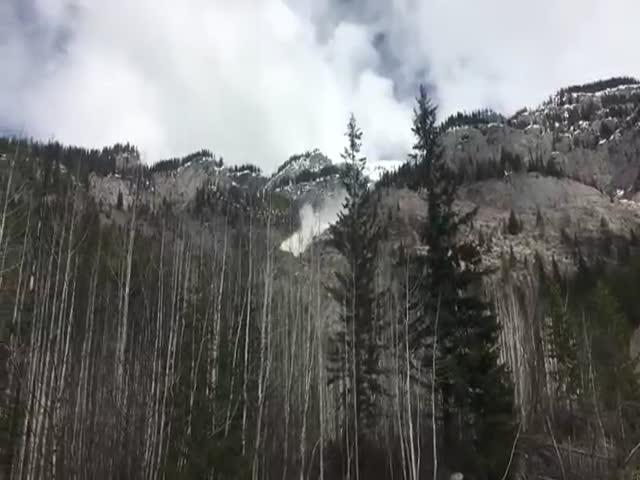 Лыжники запечатлели сход лавины в канадских горах