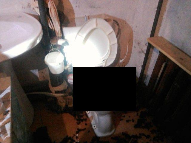Фонтан из шиповника в туалете обычной квартиры (3 фото)