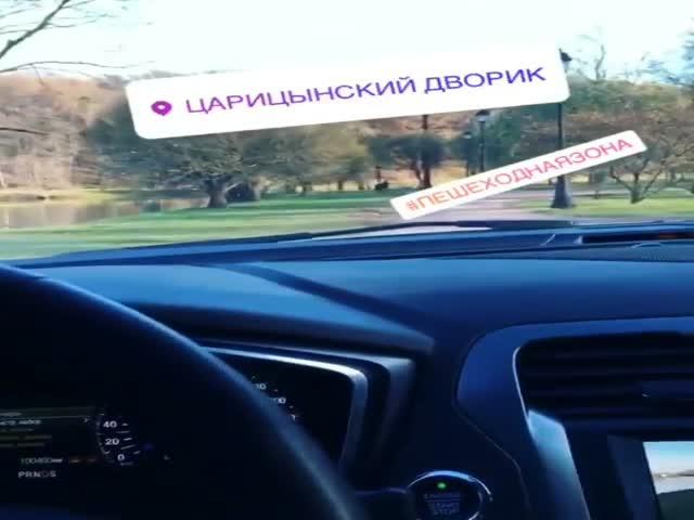 Мажоры прокатились на автомобиле по Царицынскому парку в Москве