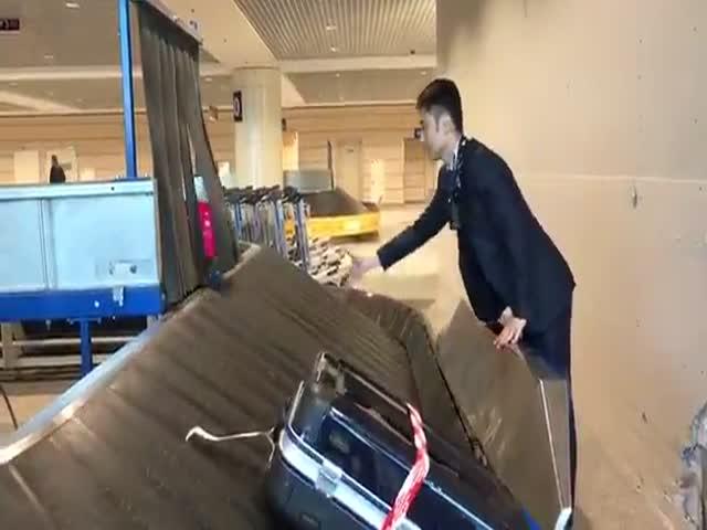Ловец чемоданов в аэропорту Домодедово