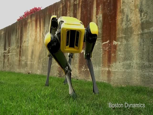 Компания Boston Dynamics показала обновленного робота SpotMini