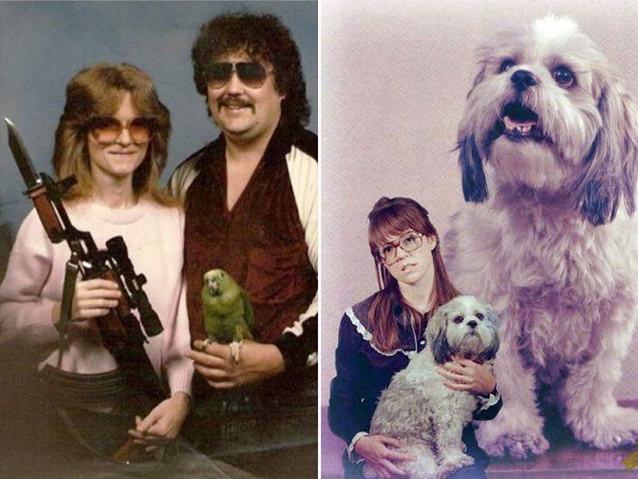 Смешные снимки с домашними животными (19 фото)