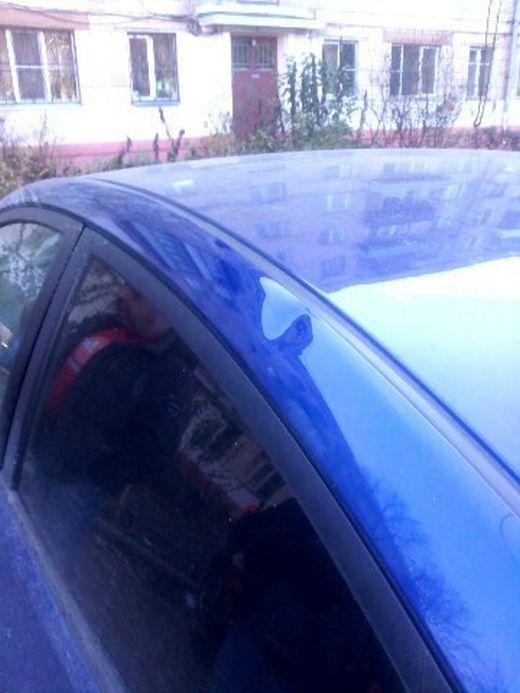 Об угонах автомобилей и работе нашей полиции (20 фото)