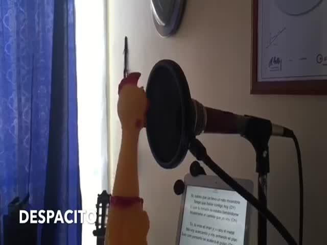 Despacito - Luis Fonsi ft. Daddy Yankee в исполнении резиновой курицы