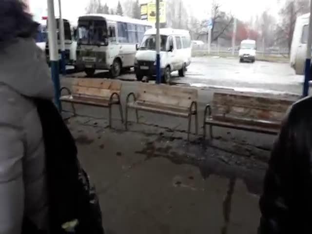 В Ульяновске незрячих людей с собаками-поводырями не пускали в автобус