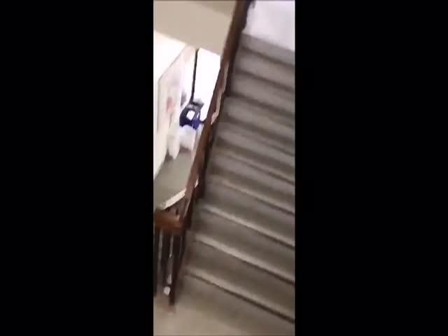 Кабаны в японской школе