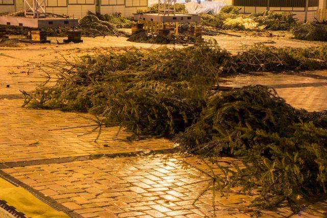 Главная новогодняя елка Украины разочаровала граждан (5 фото)