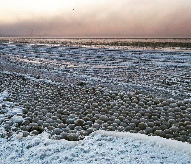 Финский залив покрылся ледяными шарами (5 фото)