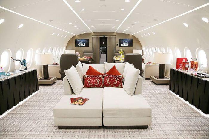 Boeing 787-8 Dreamliner компании Deer Jet - один из самых роскошных самолетов в мире (10 фото)