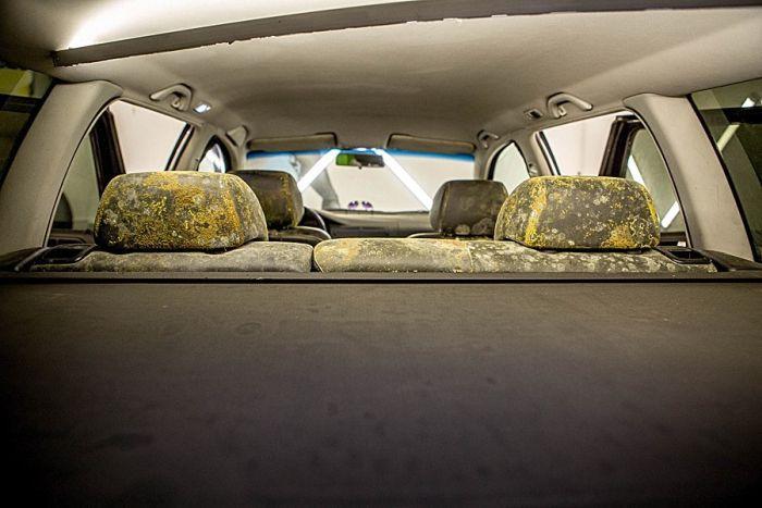 Оказывается, что реанимировать можно даже вот такой салон автомобиля (6 фото)