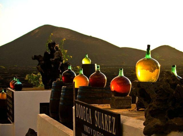 Как вулканические камни помогают виноделам острова Лансароте (7 фото)