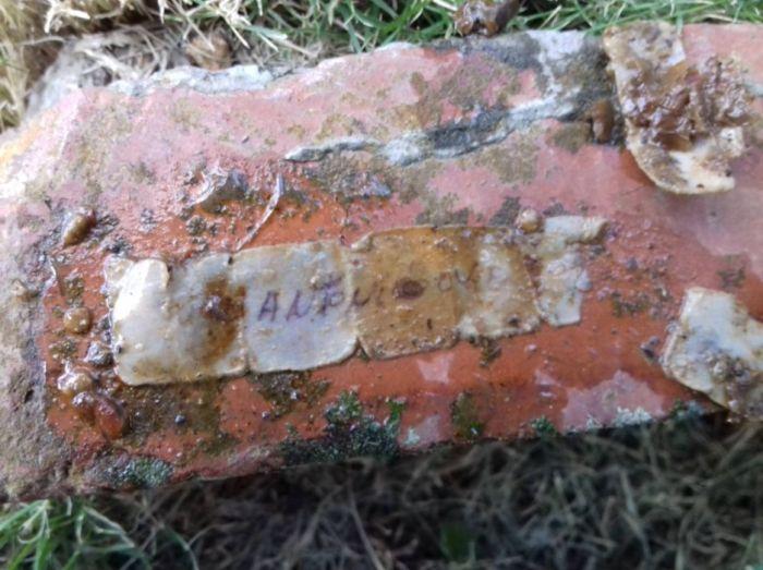 Загадочная находка во дворе дома (5 фото)